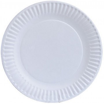 """Paper Plate 6"""" 50'S"""